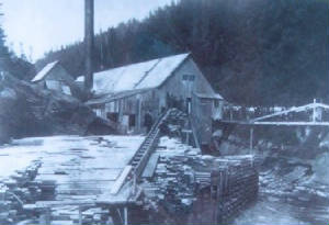 Point Wolfe Mill